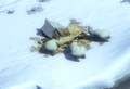 Polar Bears AOE III