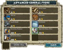 Advanced general store.jpg