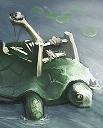 Turtle-Catapult