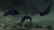 Grim Beak Crows