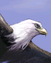 Great-Eagle