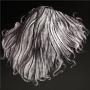 Dog Hair.png