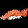 Sushi Shark.png