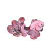 Flower Lilly.png