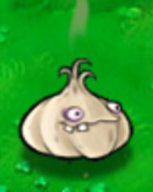 Garlic1.png