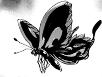 Butterfly Wriggler.png
