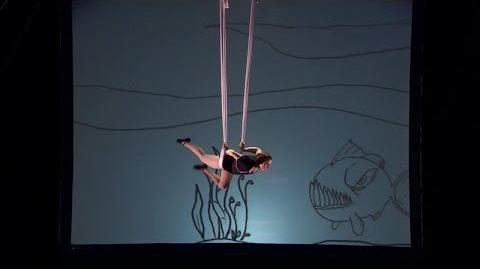 America's_Got_Talent_S09E02_Aerial_Animation_Abigail_Baird_Innovative_Aerial_Act