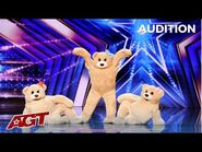 The Most FLUFFY Act Ever! When Three Bears Walk Onto America's Got Talent Stage!