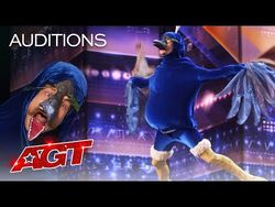 Sethward RETURNS?! Hilarity Ensues as a Wild Peacock Auditions - America's Got Talent 2021