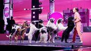 AGT Champions Finale Alexa Lauenburger Puppy Love