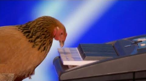 America's Got Talent 2017 Jokgu the Keyboard Playing Chicken Full Audition S12E01