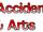 Accidents & Arts
