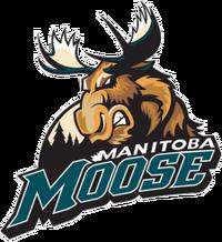 ManitobaMoose.png