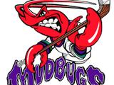 Bossier-Shreveport Mudbugs