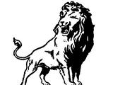 Washington Lions
