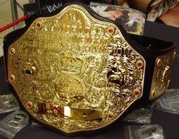 Big-gold-belt-WWE.jpg