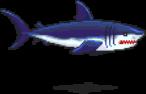 Enemies/Blue Shark