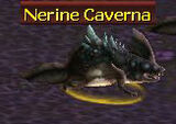 Nerine caverna.jpg
