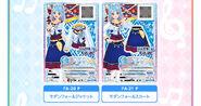 Card pass 1811 img 03