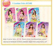 Fanbook03