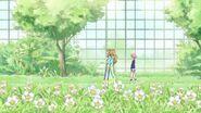 Sakura & Green Grass