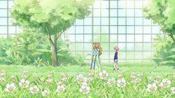 Sakura & Green Grass.jpg