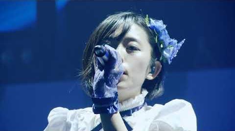 Dreaming Bird - AIKATSU! Music Festa 2017