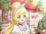 Aikatsu! Photo on Stage!!/Cardlist