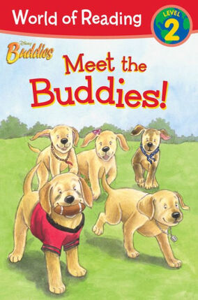 Meet the Buddies book cover.jpg