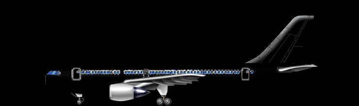 A310-200 color.png