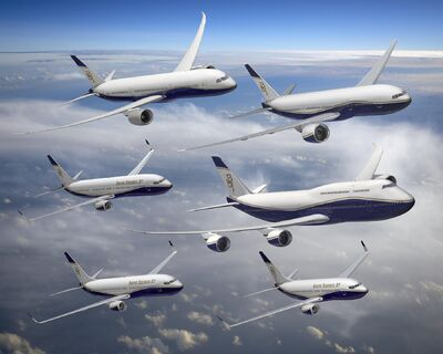 Artist's impression of the BBJ family.