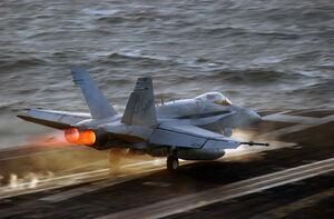 FA-18 Hornet (1).jpg