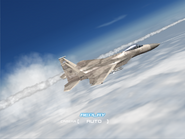 AFD2 F-15C Player (3)