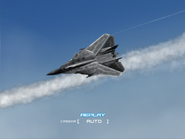 AFD2 F-14G Player (5)