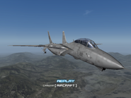 AFD2 F-14D Player (3)