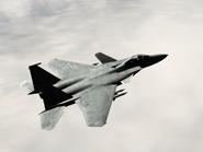 AFD2 F-15SMTD Player (2)
