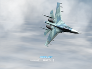 AFD2 Su-27 Player (4)
