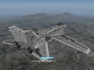 AFD2 F-14D Player (2)