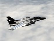AFD2 A-JAX Player (2)