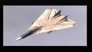 F-14D Tomcat (EDAF)