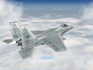 AFD2 F-15SMTD Player (3)