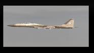 E.D.A.F. F-15C emblem