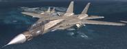 F-14D Maverick Cutscene 2