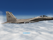 AFD2 F-15C Player (4)