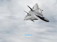 AFD2 F-14D Player (5)