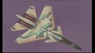 Su-30MKI Enemy AFD Storm (Alt)