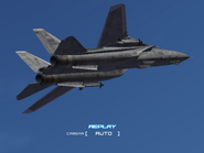 AFD2 F-14D Player (4)