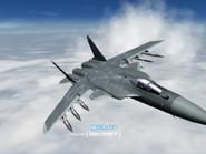 AFD2 Su-47 Player (2)