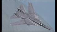 Grumman F-14D Super Tomcat (1)