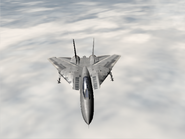 AFD2 F-14D Player
